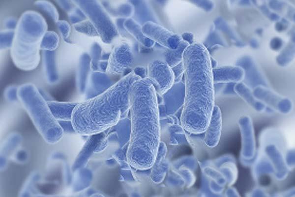 infecciones, imagen enlace de portada