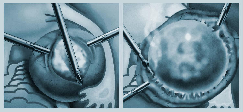 luciavior. ginecologa, urgencias covid-19